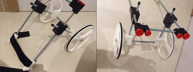 デザインと3Dのプロが伝える3Dプリンタや最新テクノロジー 3DP id.arts事故によって下半身に障害を負ったワンちゃんのために造られた3Dプリント車椅子と、悲しい別れ…