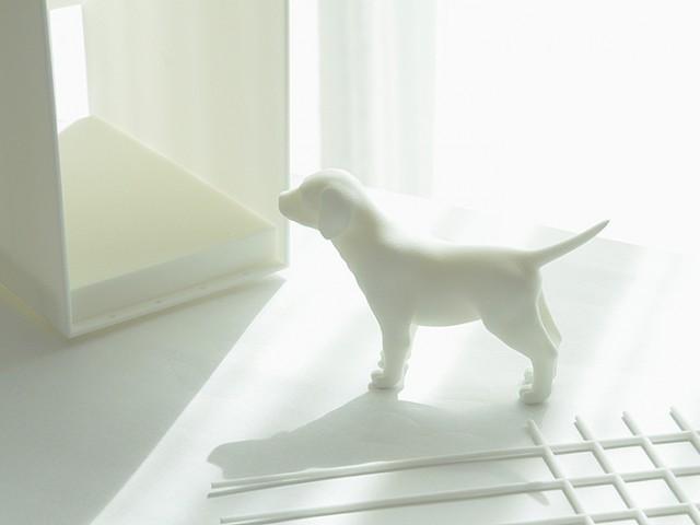3Dプリンタ製品開発応用事例:新型デザインペットケージのモックアップ