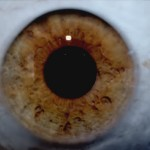 High-Quality-Capture-Eyes-1