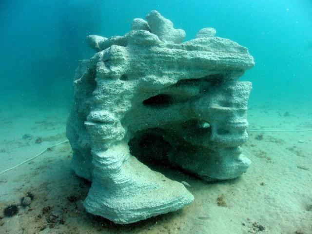 3Dプリントサンゴが海の生態系を復活させる