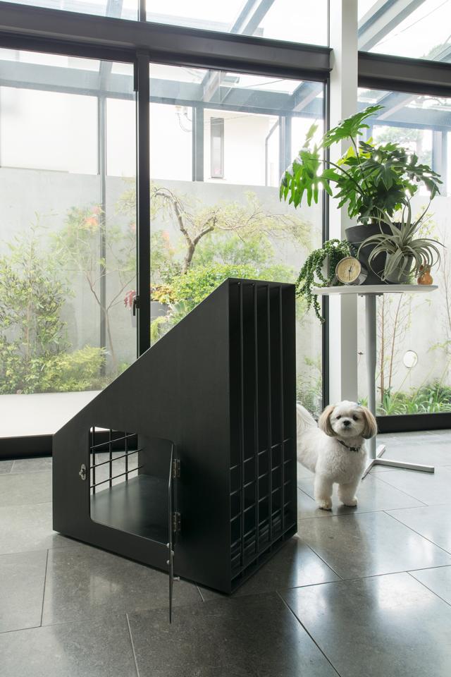 pet_cage-1
