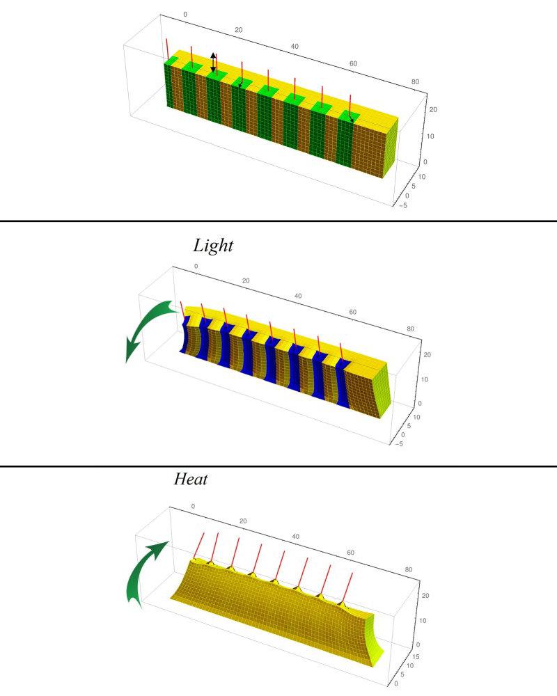 4d-printed-composite-material-1