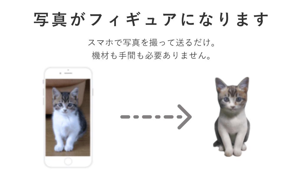 Petfig-Partner-2